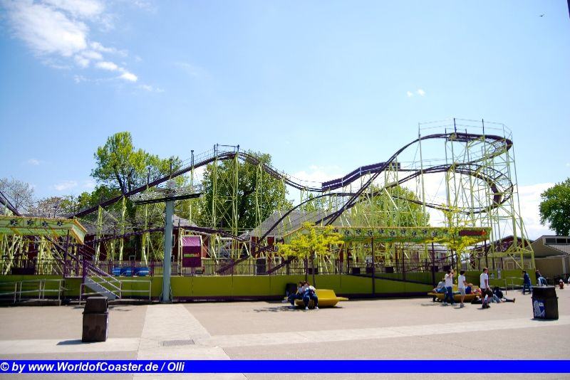 Wildcat @ Cedar Point