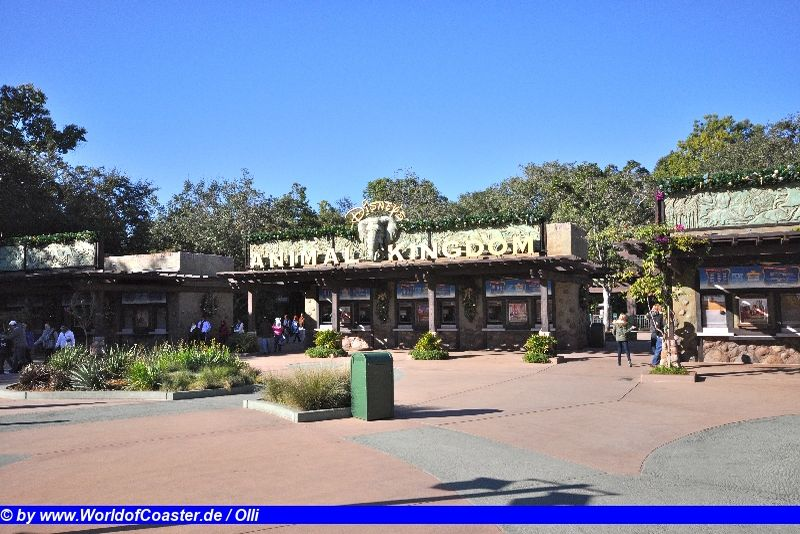 Disney´s Animal Kingdom