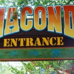 Kings Dominion - Anaconda - 001