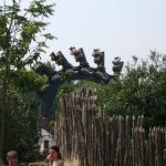 Phantasialand - Black Mamba - 009