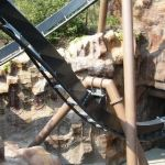 Phantasialand - Black Mamba - 035