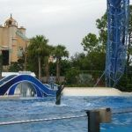 Sea World Orlando - Horizon - 021