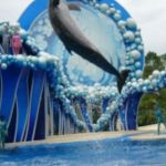 Sea World Orlando - Horizon - 026