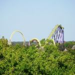 Six Flags Great Adventure - Medusa - 013