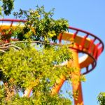 Six Flags Magic Mountain - Tatsu - 002